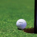 Monster Golf Swing Review