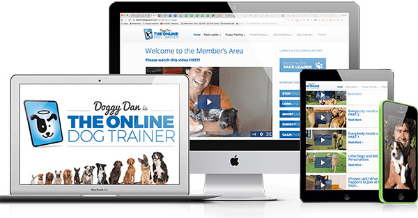 the online dog trainer full package